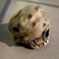 custom-heads-20121127-18