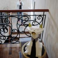 loudest-cat-20121222-06